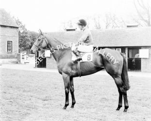 Highclere with Joe Mercer (651-01a)